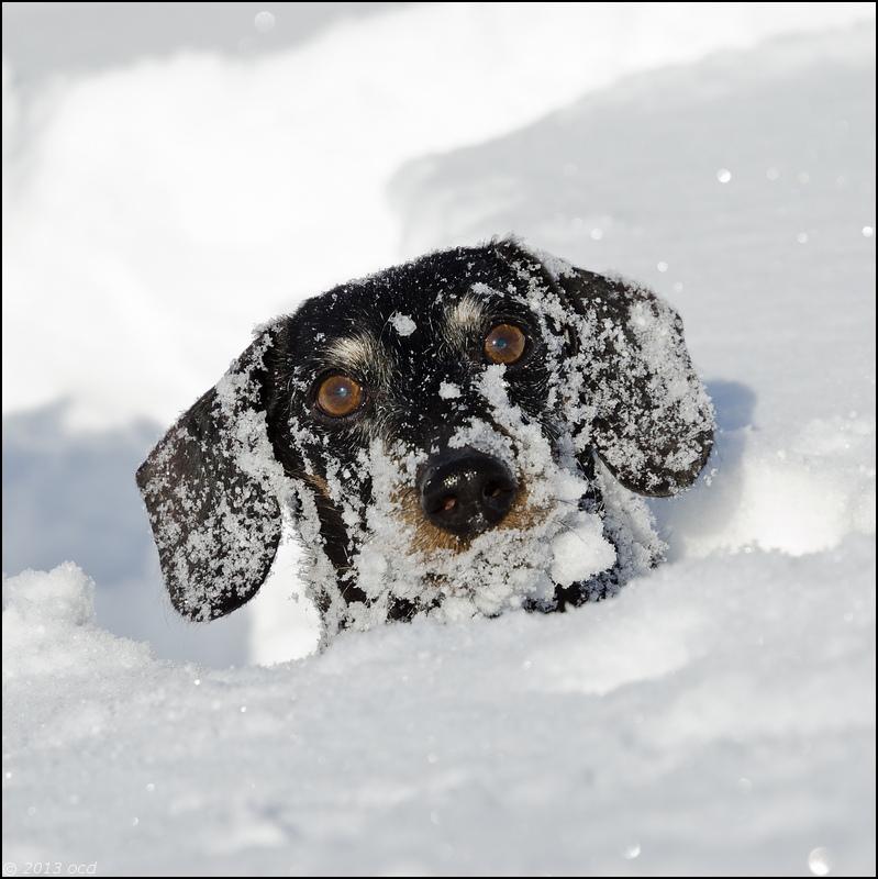 tek-neige-15