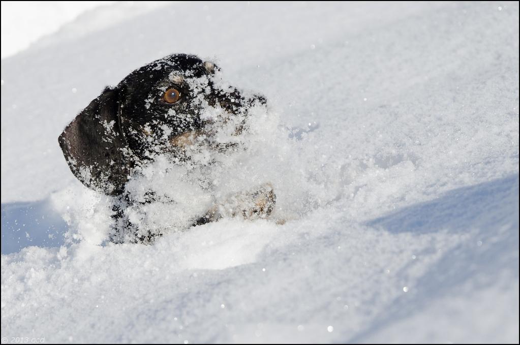 tek-neige-8