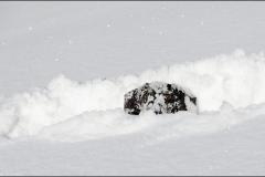 tek-neige-4