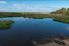 paysage-pantanal-un