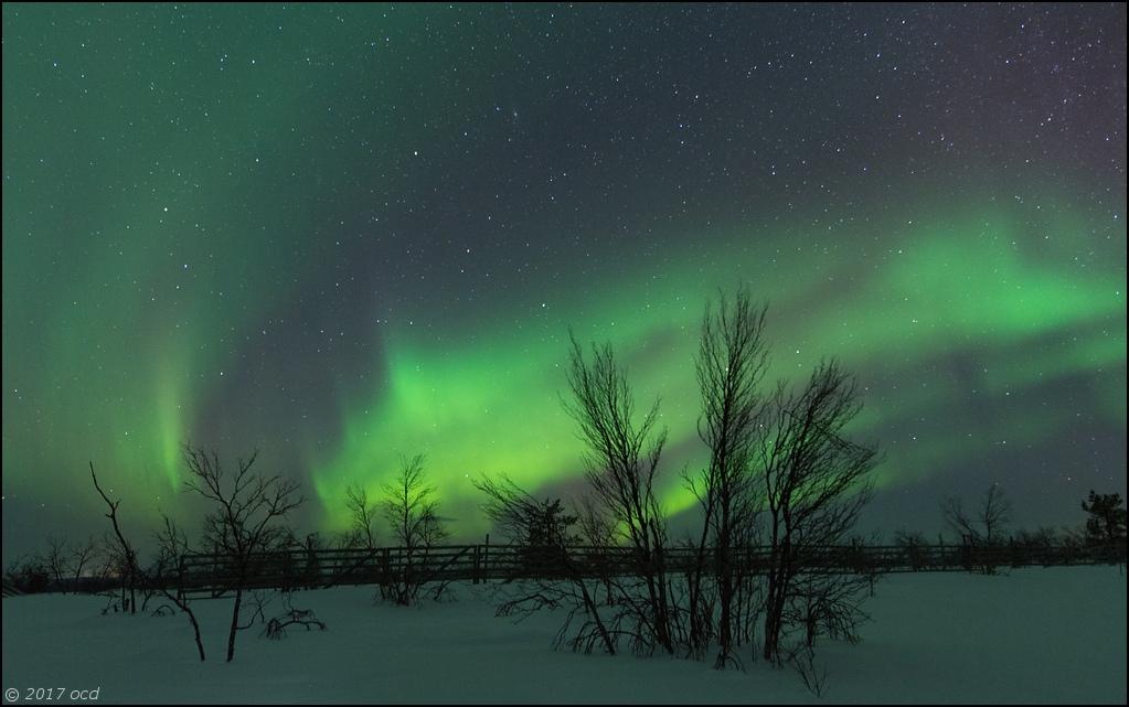 aurore-six