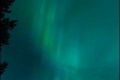 aurore-quinze