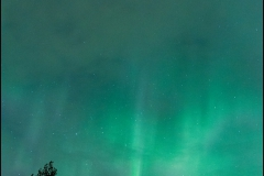 aurore-sept