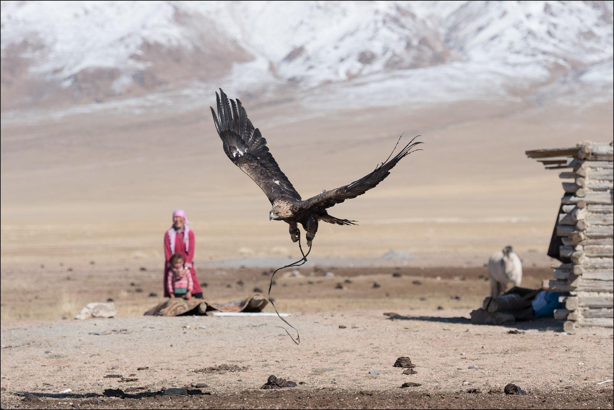 Mongolie-2017-14