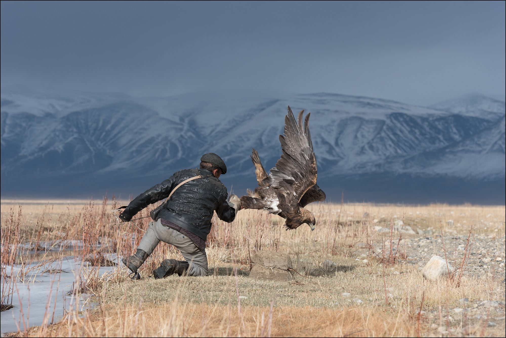 Mongolie-2017-38-2