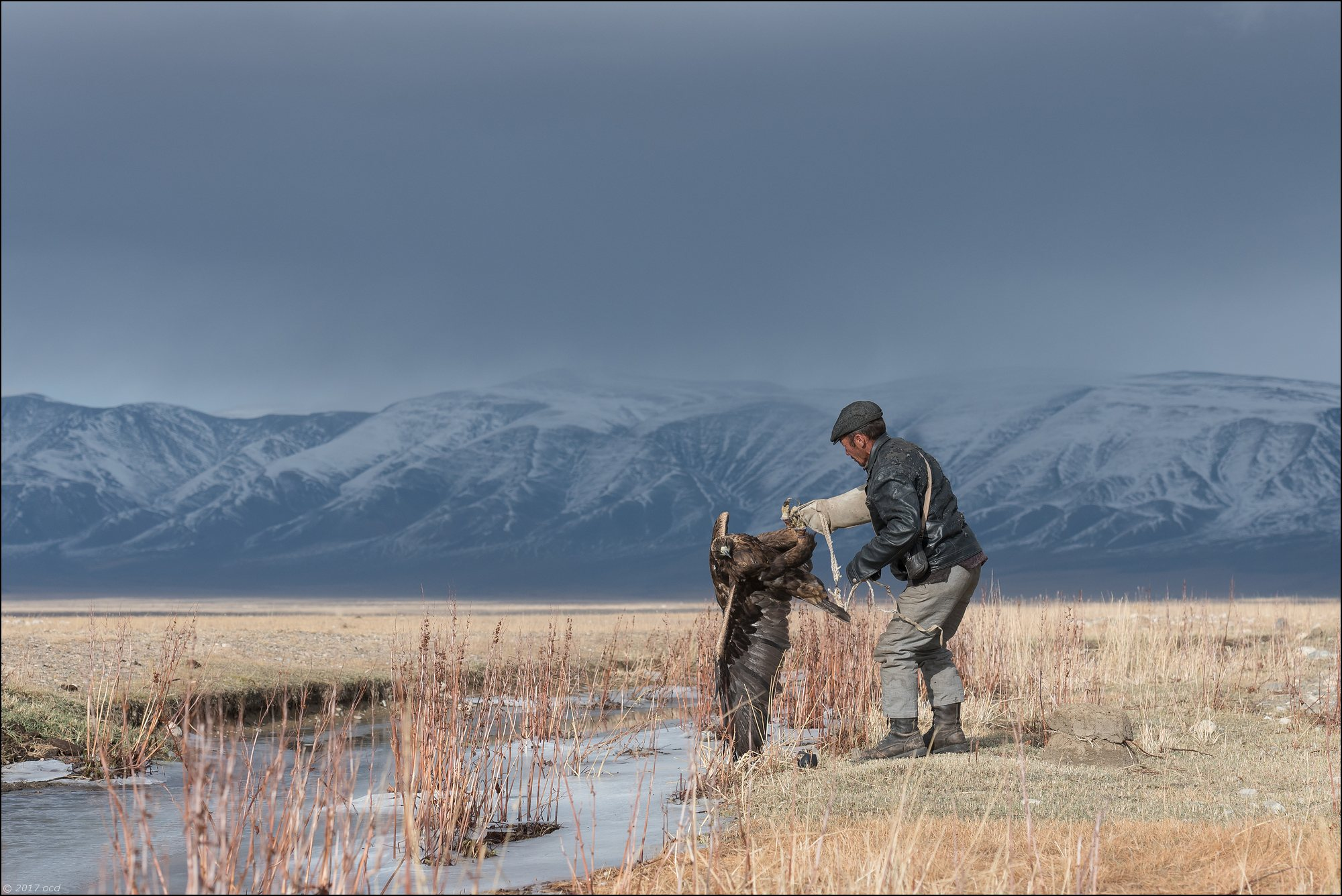 Mongolie-2017-39