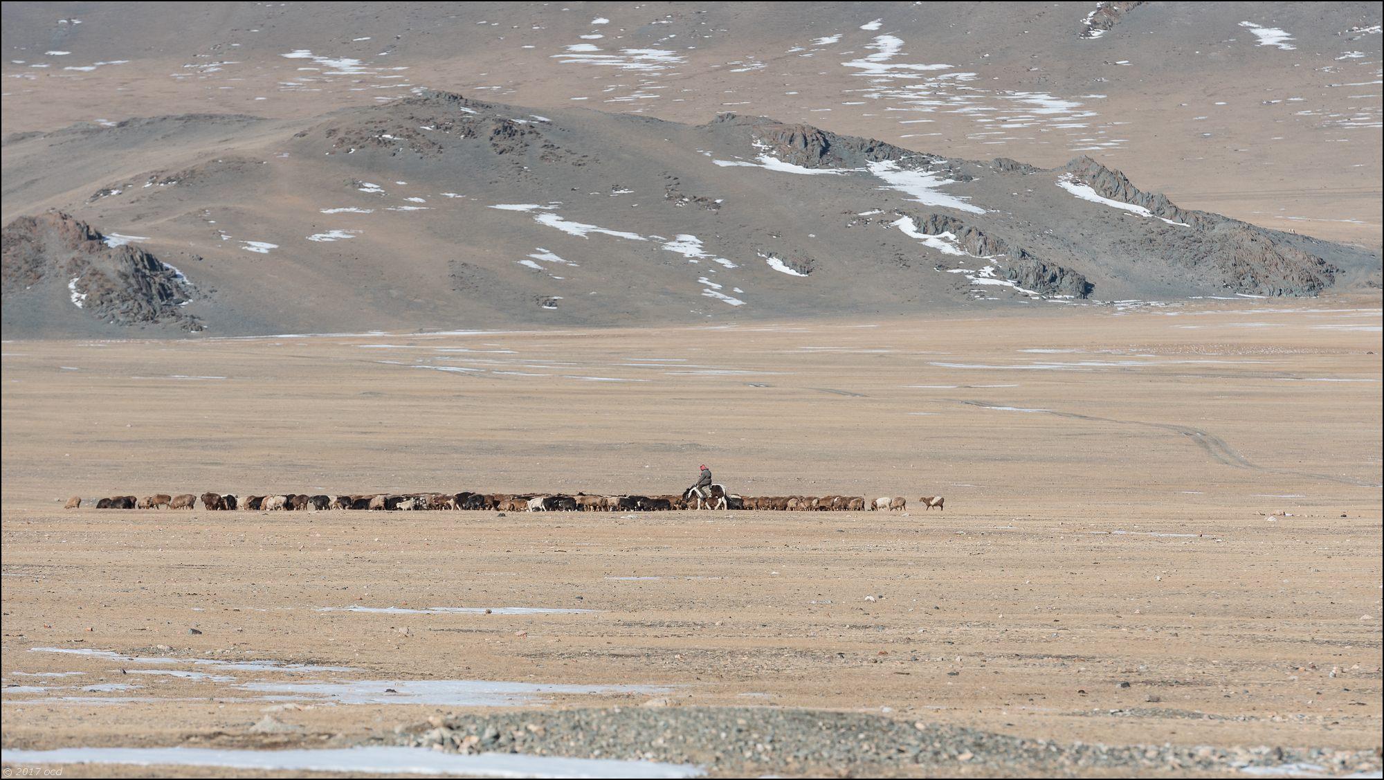 Mongolie-2017-55