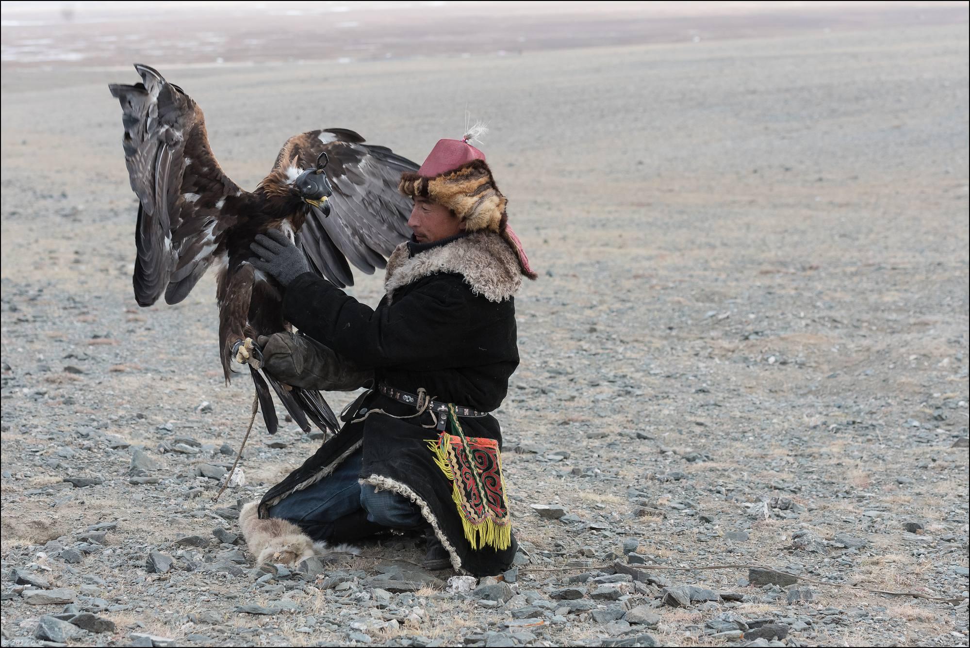 Mongolie-2017-57