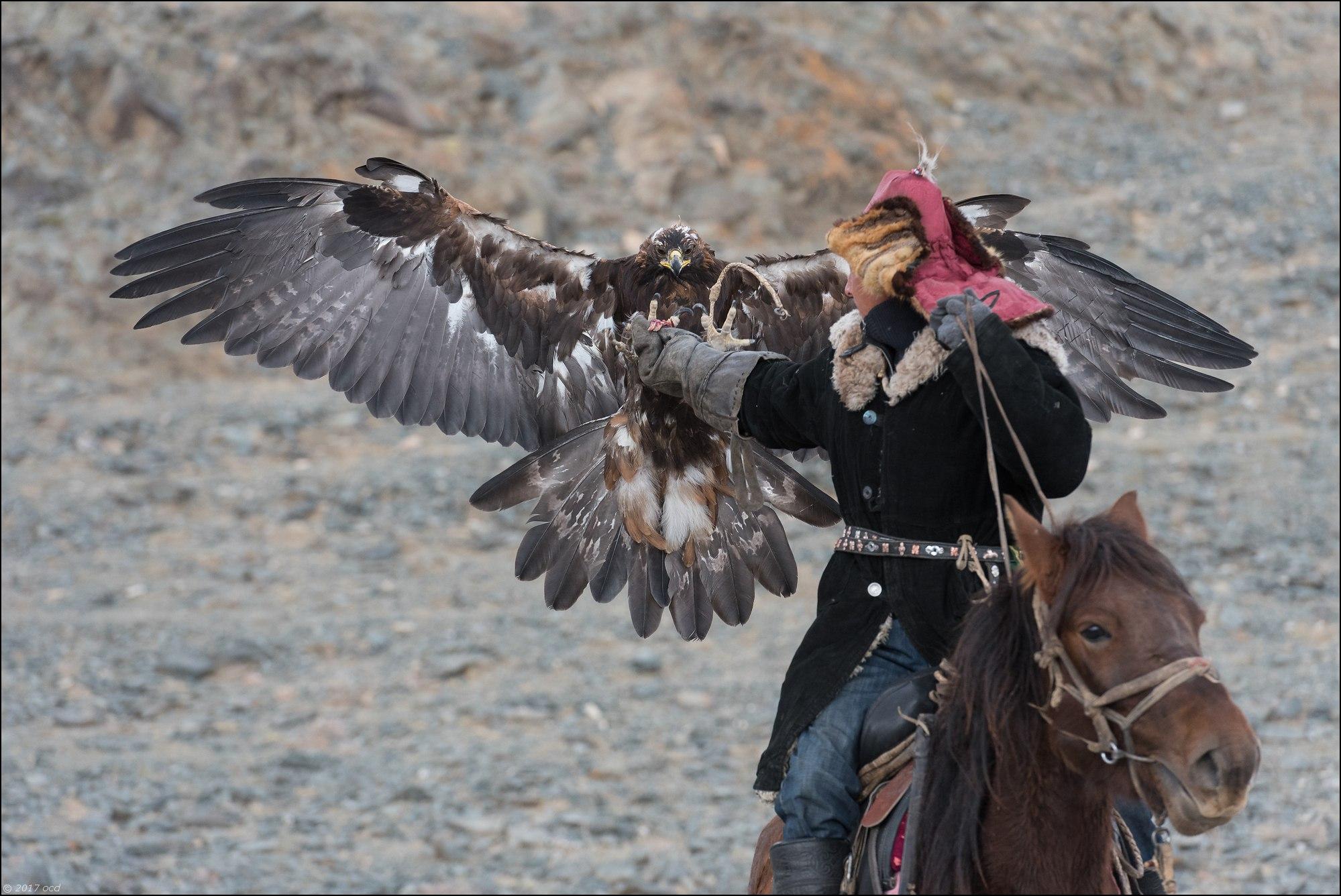 Mongolie-2017-59