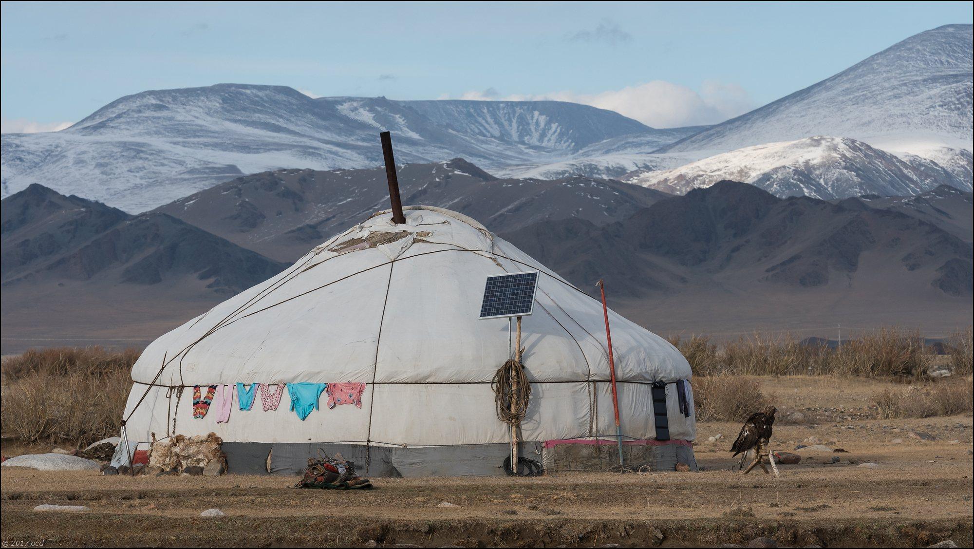 Mongolie-2017- scène de vie deux