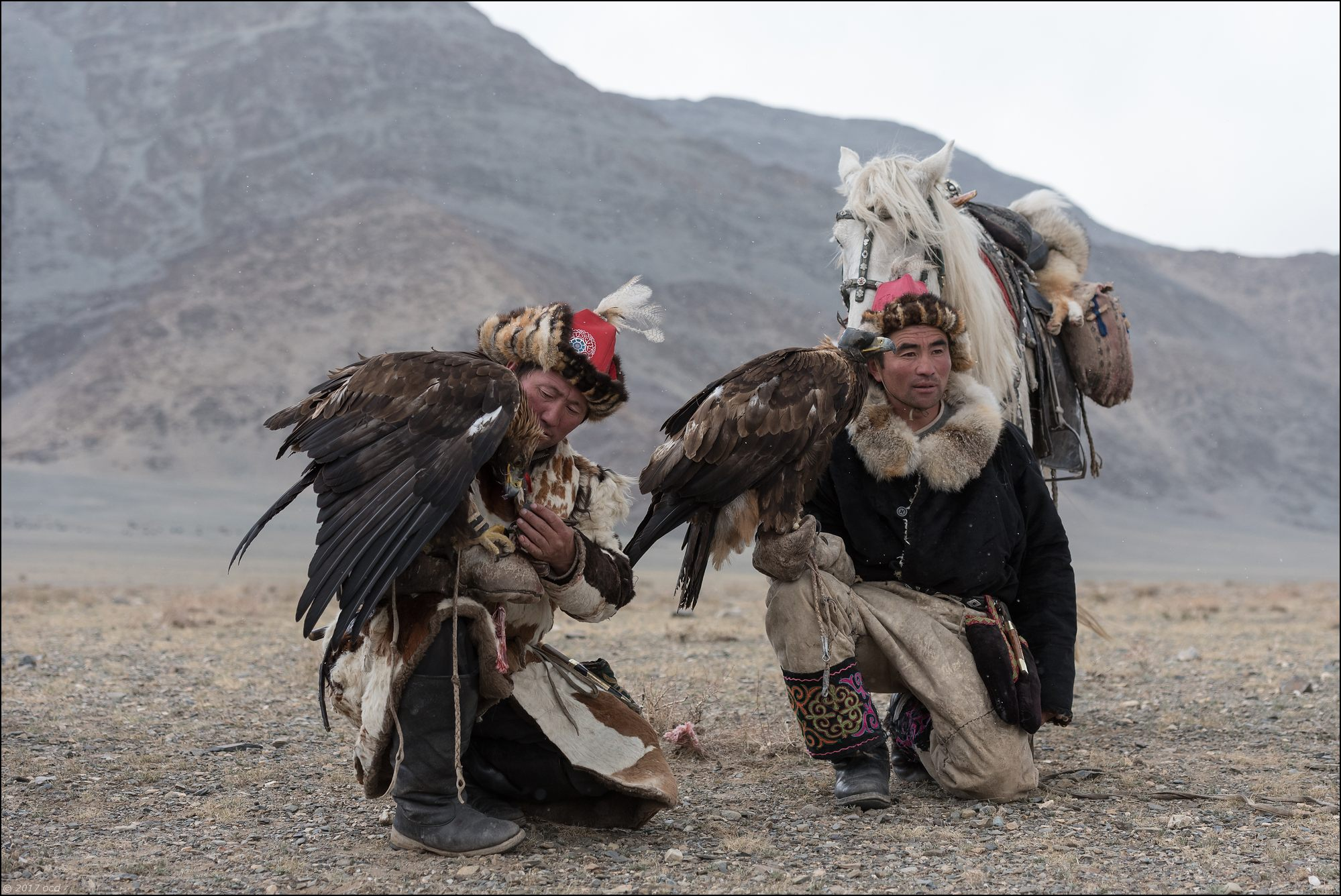 Mongolie-festival-dixsept