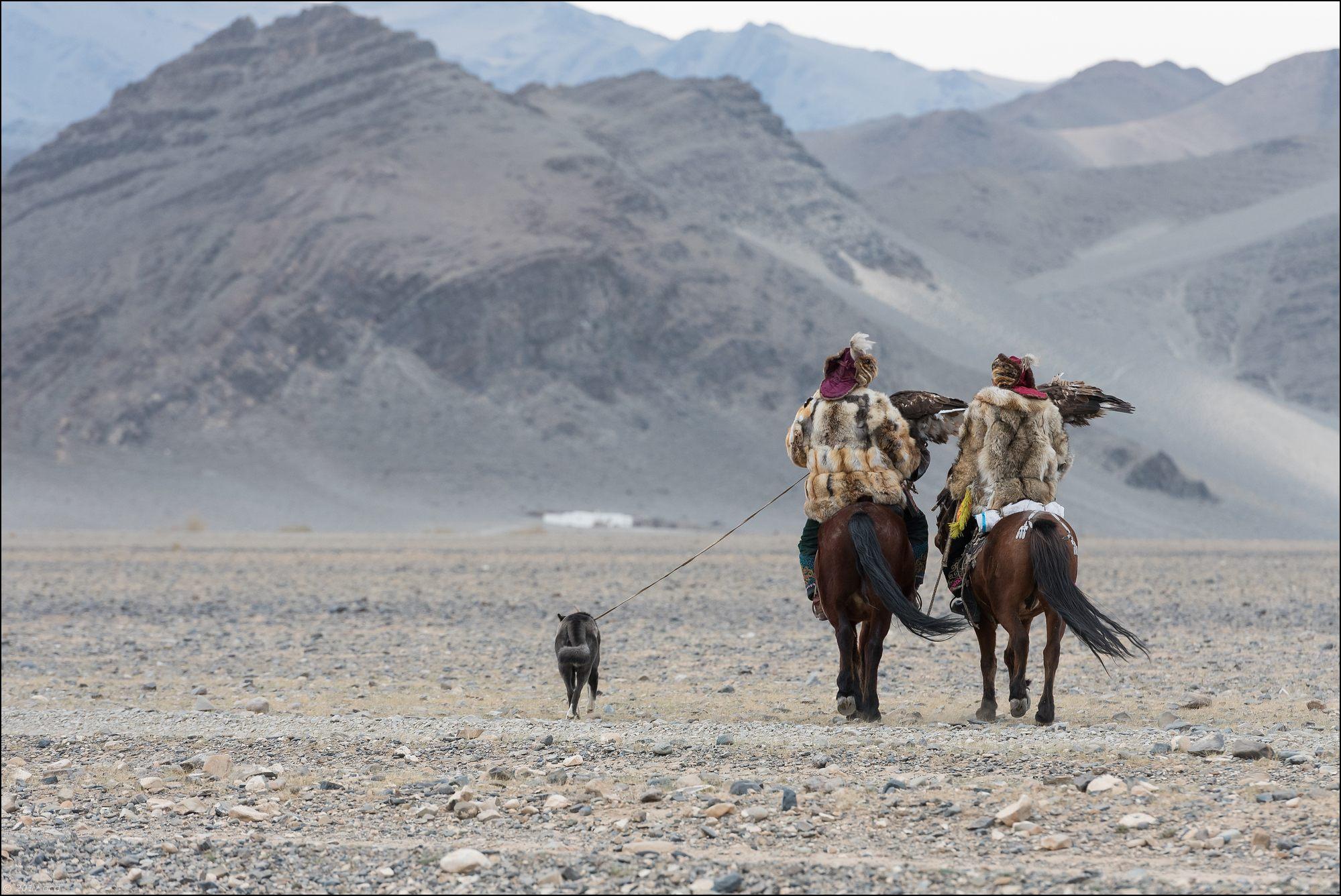 Mongolie-festival-onze