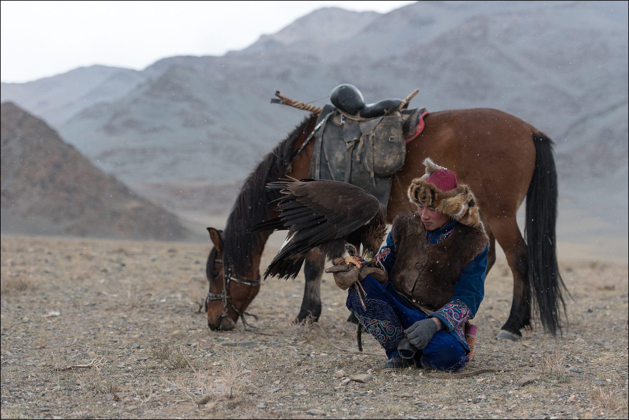 Mongolie-festival-seize