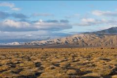 Mongolie-2016-payage-cinq