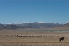 Mongolie-paysage-huit