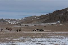 Mongolie-paysage-treize