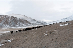 Mongolie-paysage-un-2