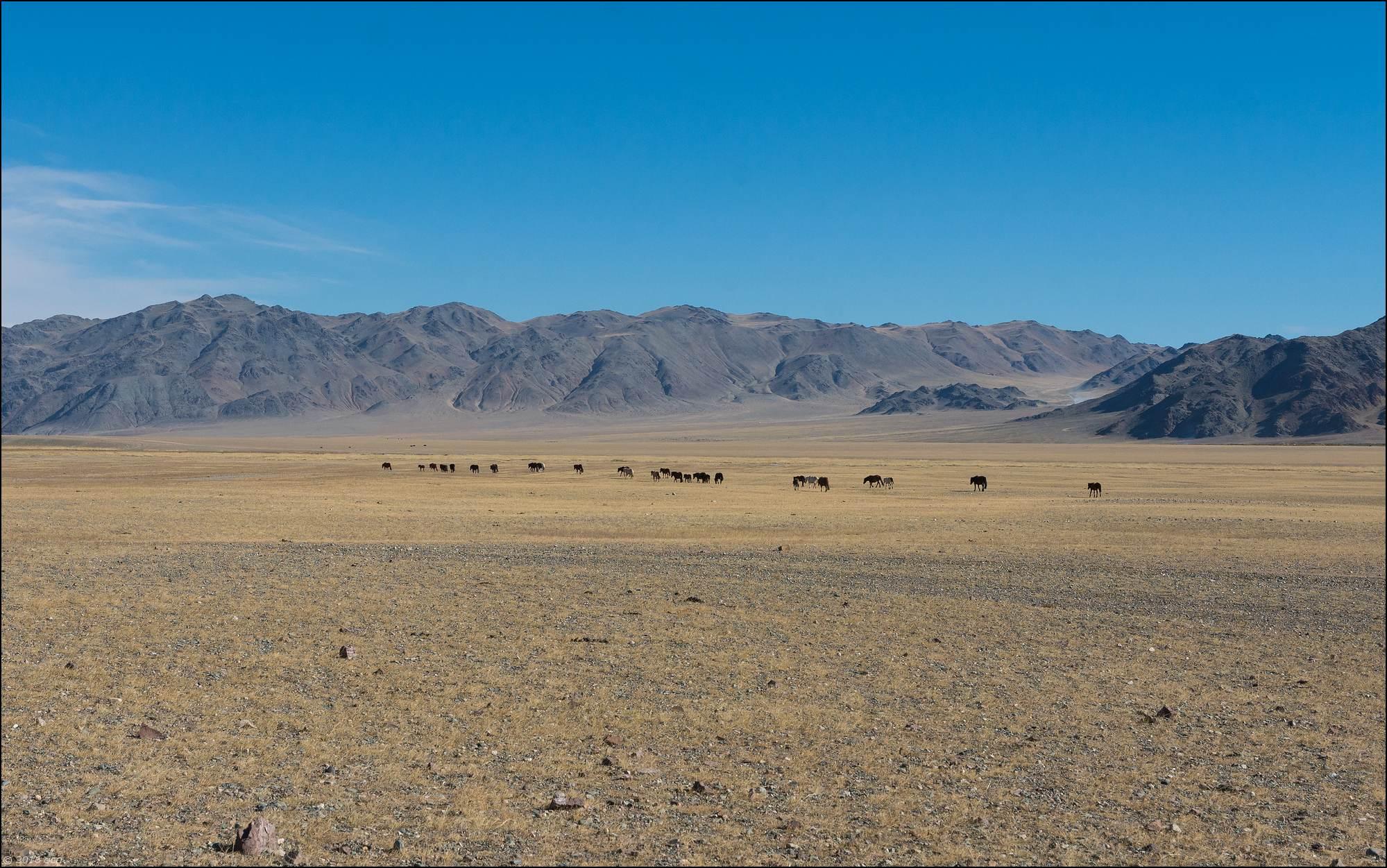 mongolie-paysage-2