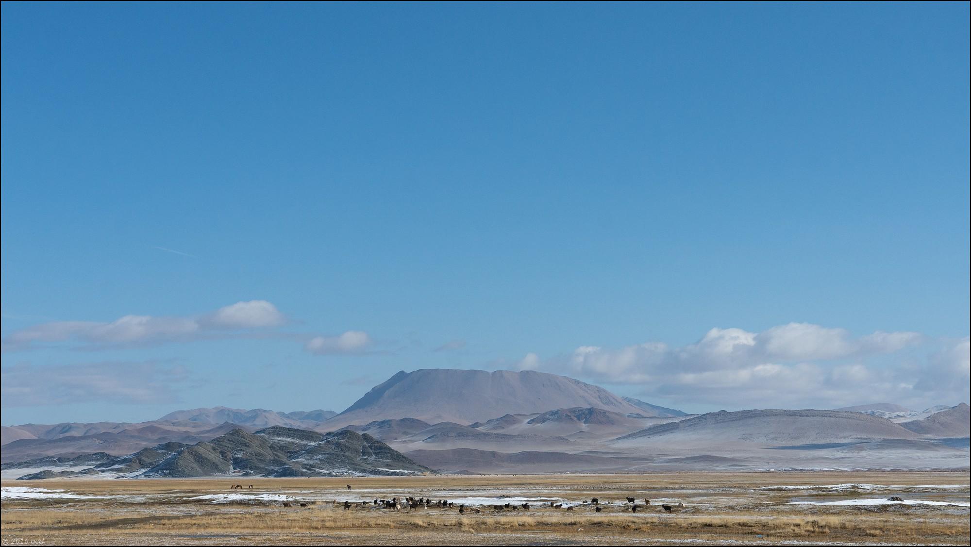 mongolie-paysage